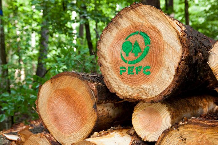 (c) PEFC